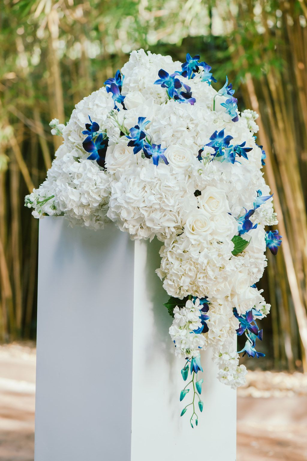 Blue and white hydrangea and orchid ceremony florals