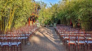 2020 02-09 Simply Elegant Green Courtyard Wedding at St. Pete venue NOVA 535